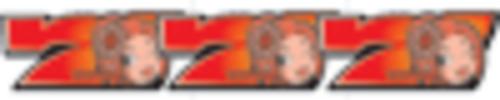 赤獅子BONUS(459枚を超える払い出しで終了+チャンスゾーン999G)