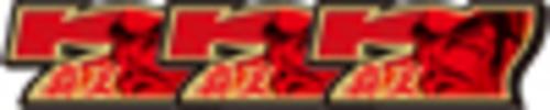 覇王BONUS(216枚を超える払い出しで終了)