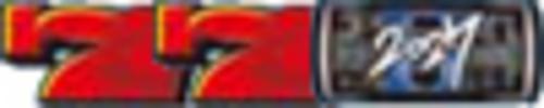 REG BONUS(5回の入賞又は5回の遊技で終了)