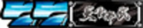 REG BONUS(8ゲームで終了)